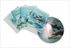 Тетрадь общая 48 листов дельфины